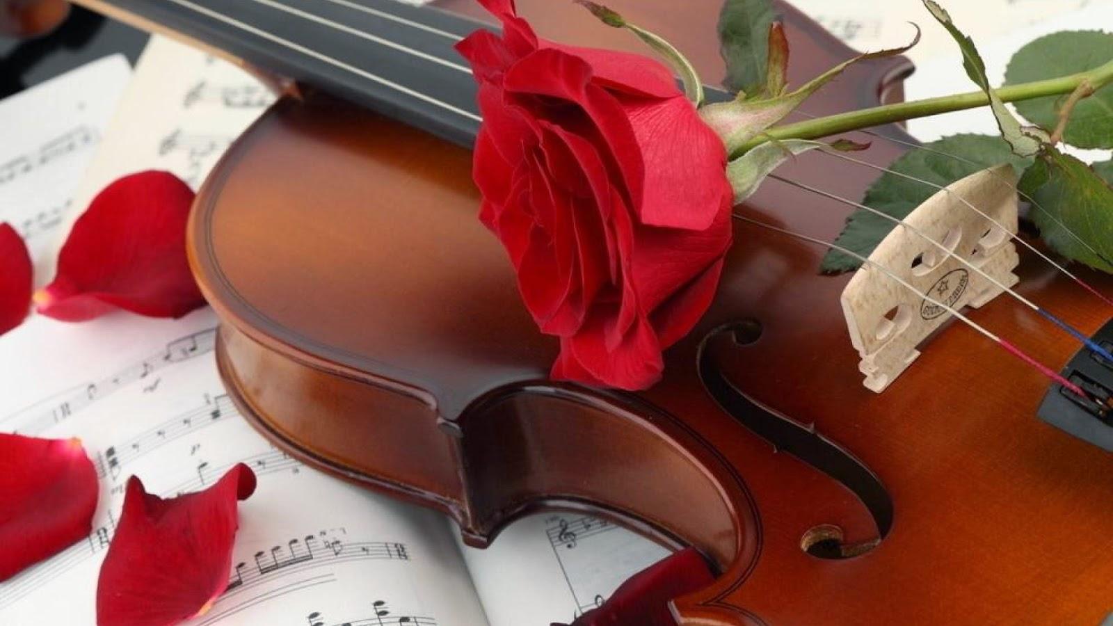 Guitar Rose Wallpaper