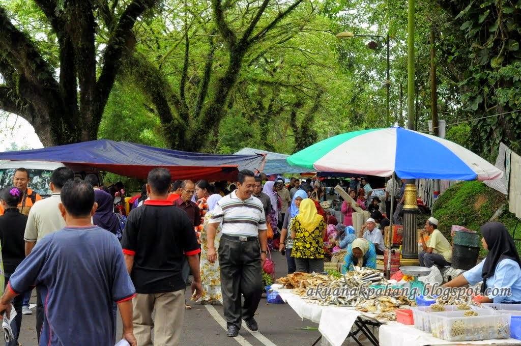 Senarai Pasar Malam Pekan Sehari Dan Pasar Tani Daerah Temerloh