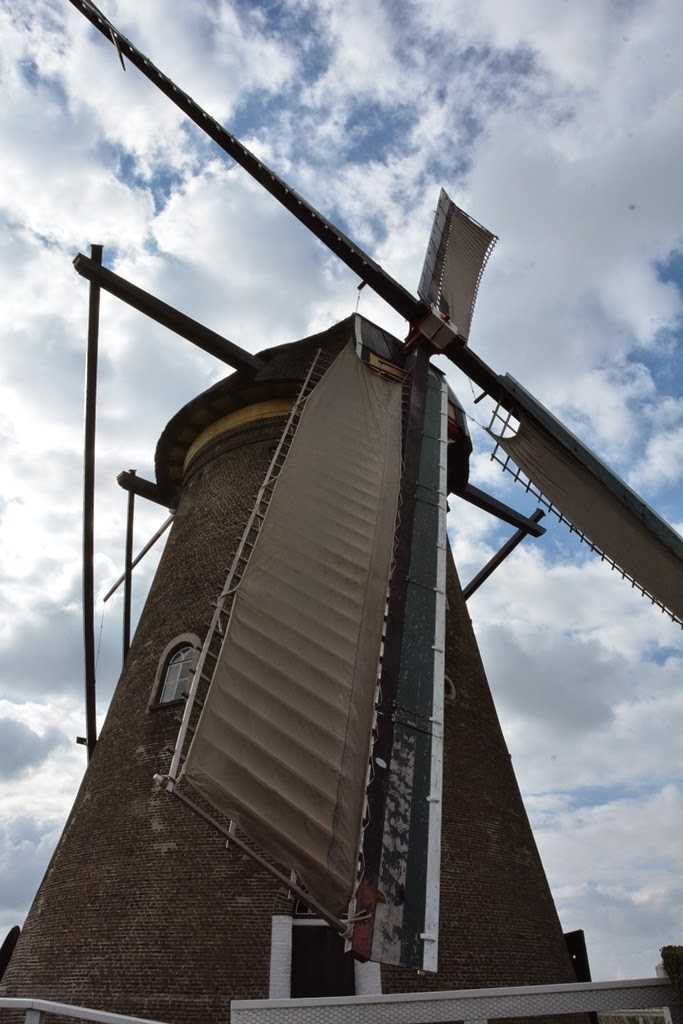 Windmill Kinderdijk Holland