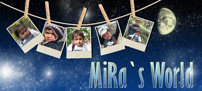 MiRa`s Design