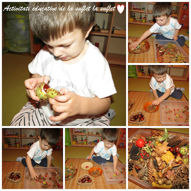 fall activities, oszi tevekenysegek