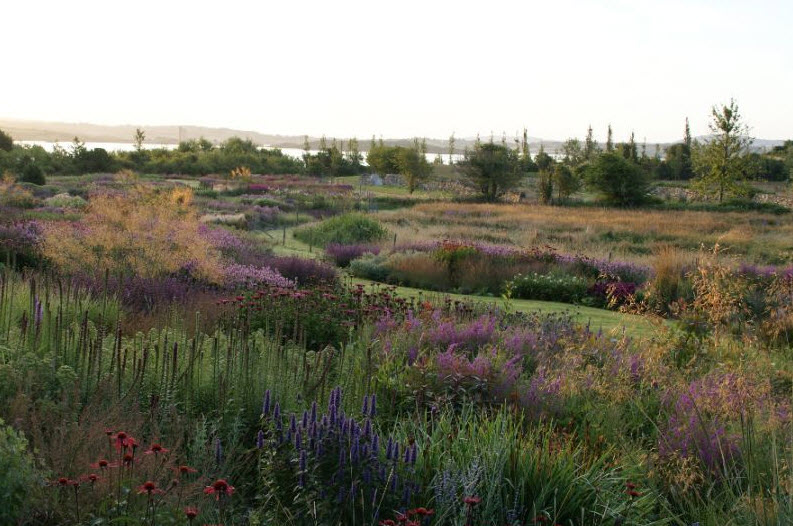 piet oudolf landscapes in landscape thinking outside ForLandscapes In Landscapes Piet Oudolf