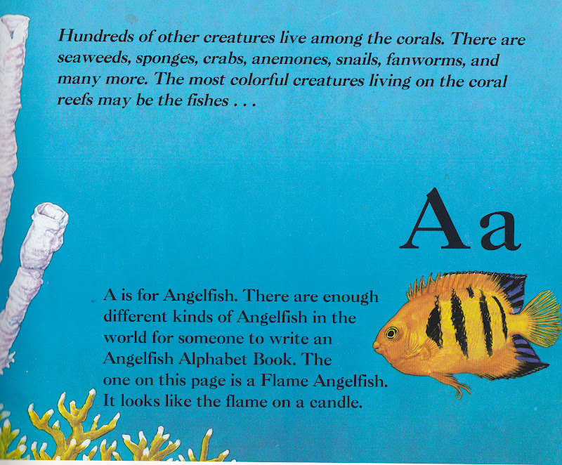 its written in a conversational way and filled with facts you forget its actually an alphabet book - Colorful Fish Book