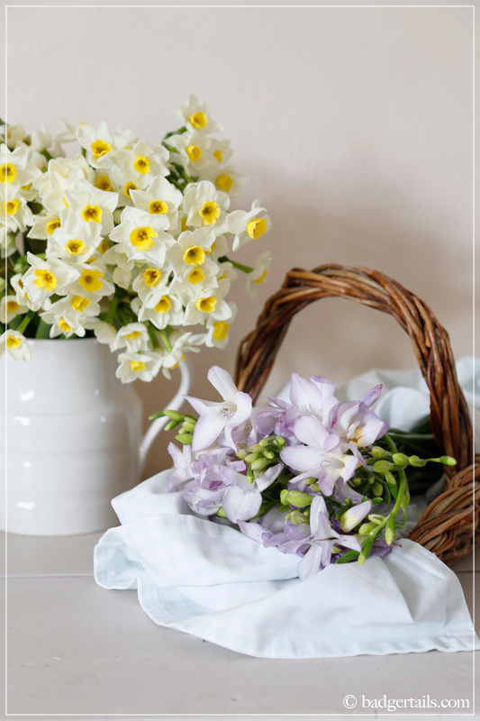 Lilac Freesia in Basket with Narcissus
