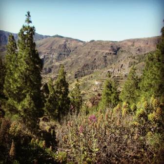 Parque Rural del Nublo, Gran Canaria