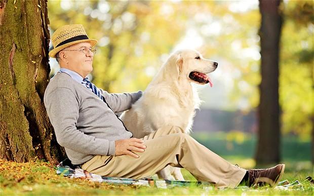 lecciones-espirituales-perro