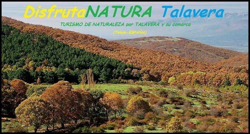 DisfrutaNATURA Talavera