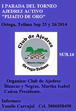 Ortega (Tolima) I Parada Ajedrez Activo Pijaito de Oro (Dar clic a la imagen)