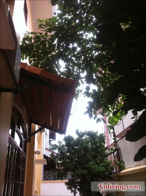 Villa in An Phu - 4 Bedroom - 560 sq m - $2,300month