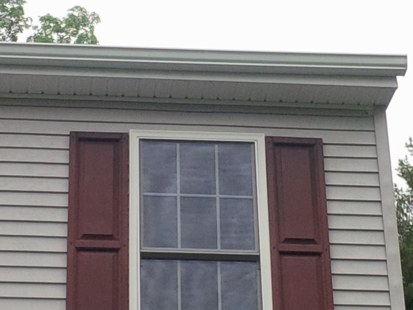 Coxsakie NY gutter cleaning and whitening
