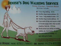 Denise's Dog Walking