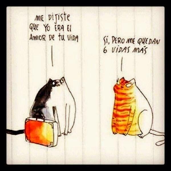 Quiero ser un gato