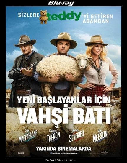 Yeni Başlayanlar Için Vahşi Batı (2014) - 1080p - 720p - Brrip - Tek Link indir