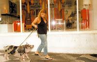 Sueli Almeida passeia na rua com sua porquinha de estimação, Pit