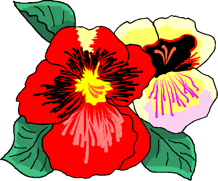 Red and White Flower Free Clipart