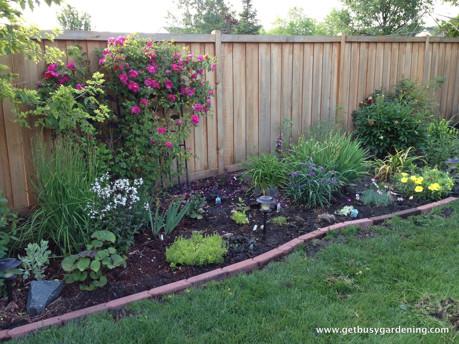 Large Perennial Garden