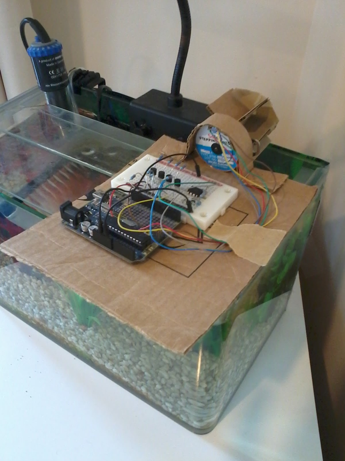 fish adrian drip video feeder automatic diy and image plants for
