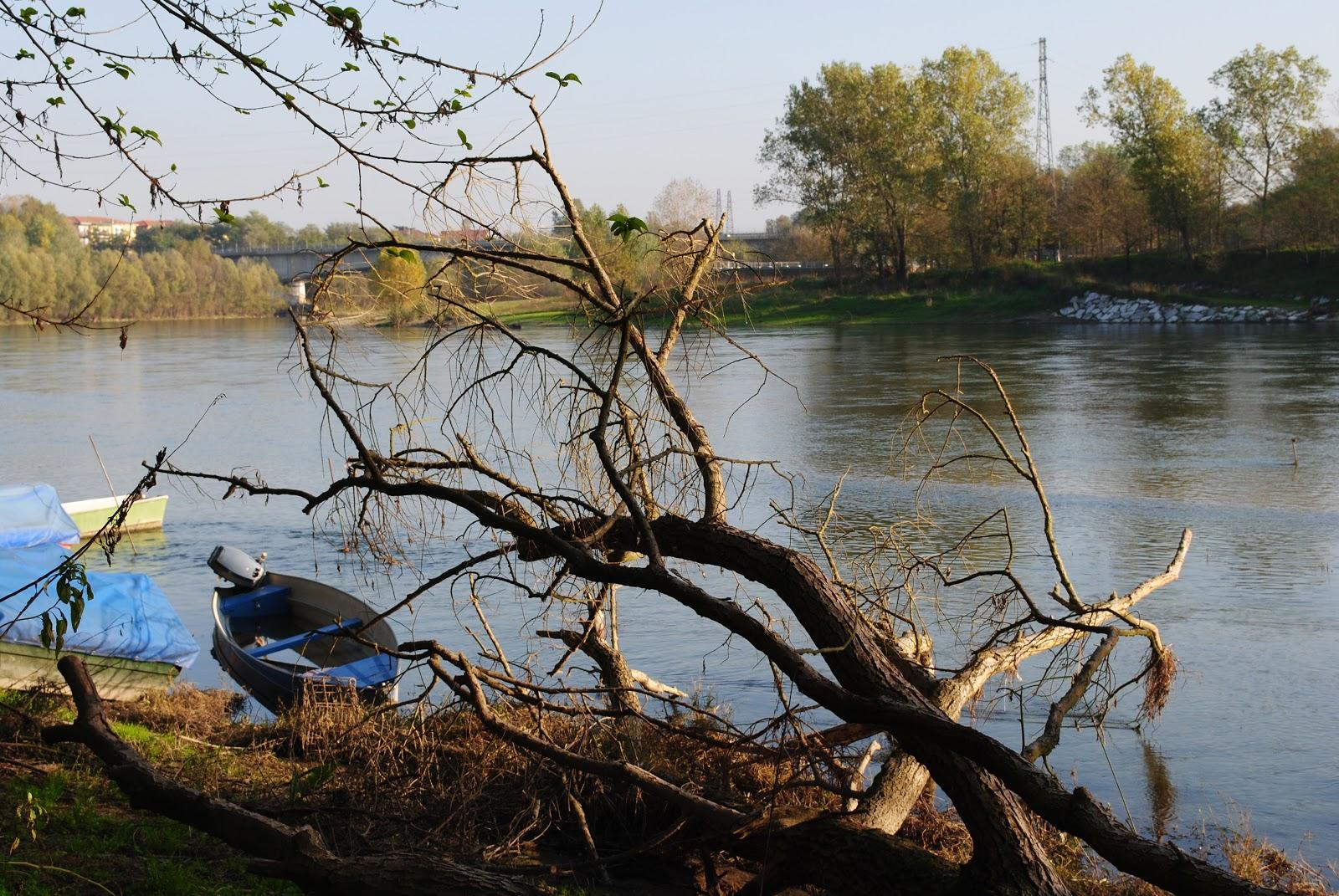 Blog gallery pavia il ticino e la casa sul fiume for Piccoli piani di casa sul fiume