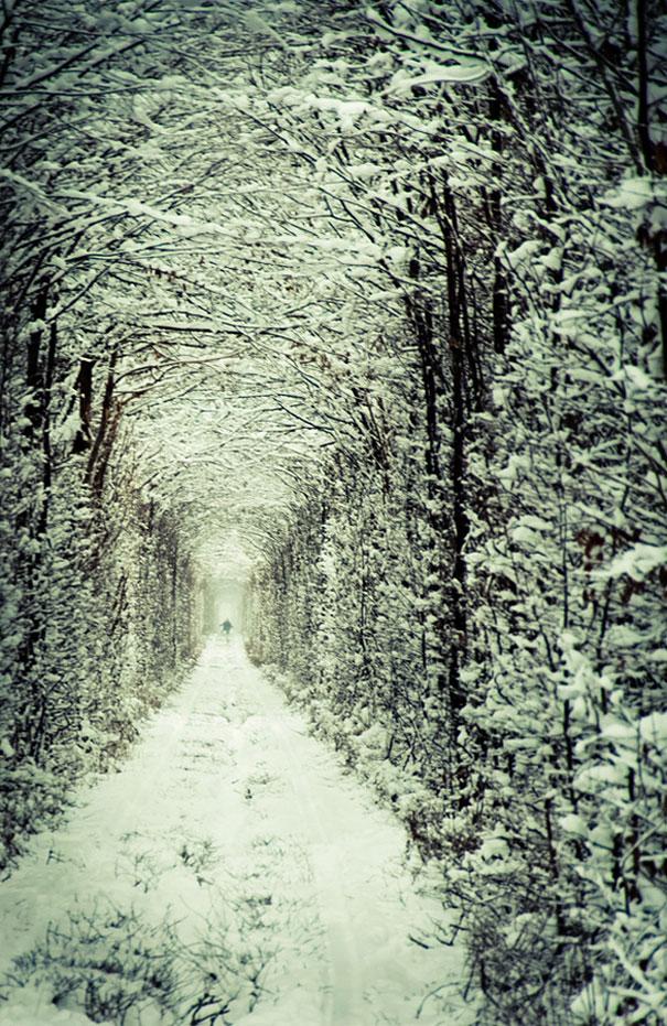 شاهد بالصور : نفق الحب في أوكرانيا tunnel-of-love-ukrai