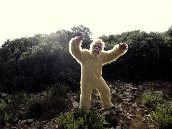 Yeti Trail-2011