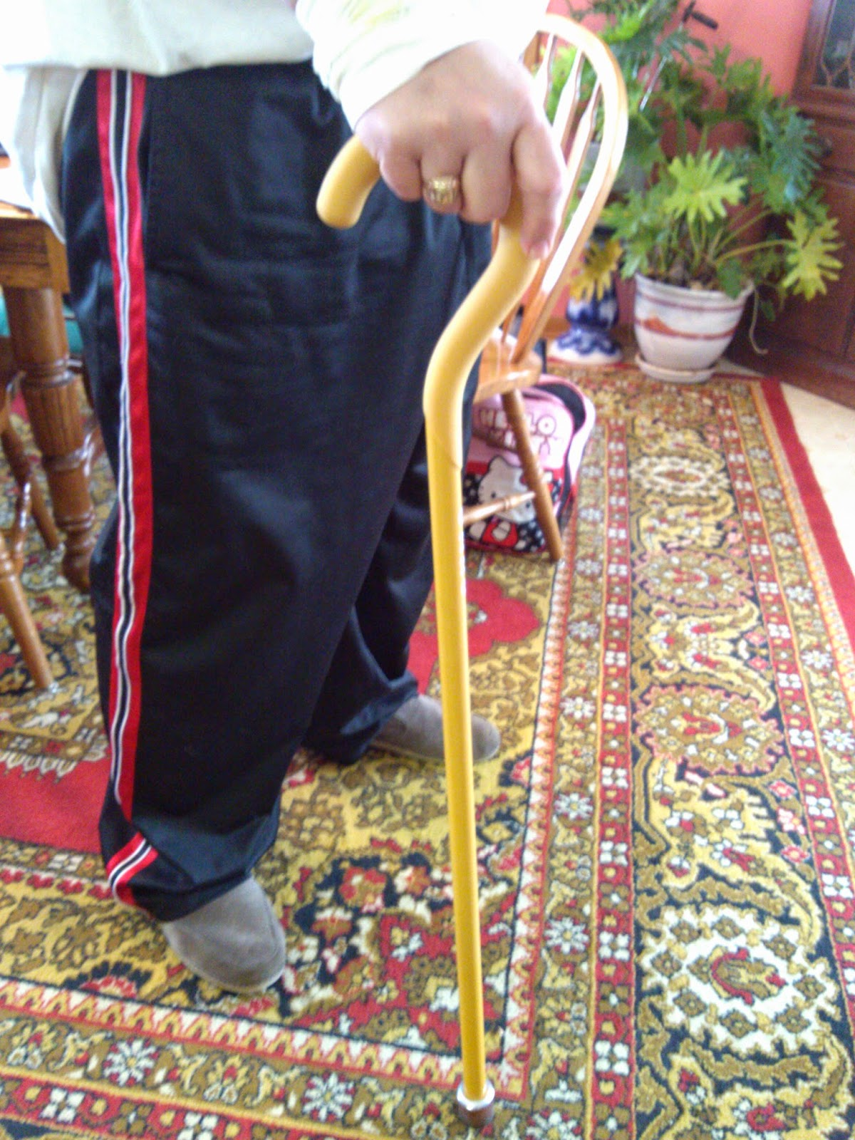 Sabi Sport Lightweight Cane Review