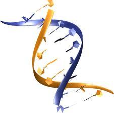 Pengertian Bioteknologi Modern
