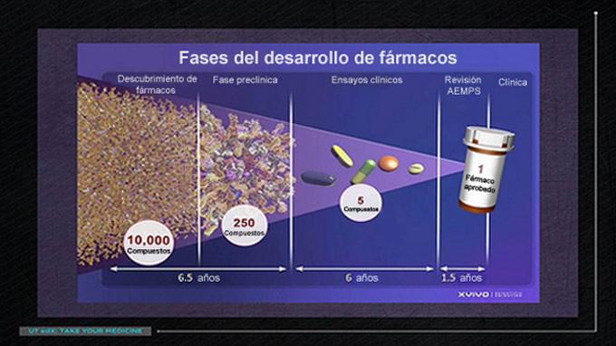 Fases del desarrollo en la investigación de fármacos