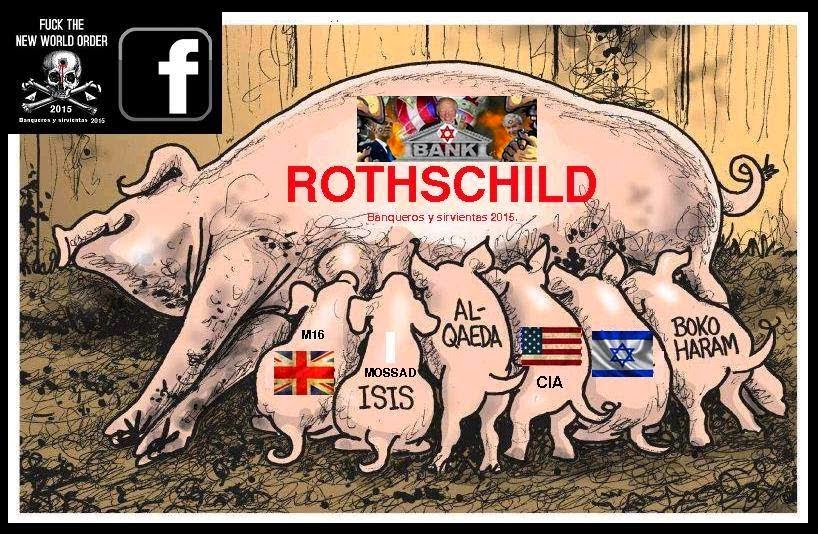 Un mundo de cerdos