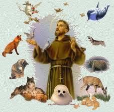 São Francisco de Assis, protetor dos animais