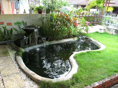 Koi pond maintenance koi fish care info for Koi carp pool design