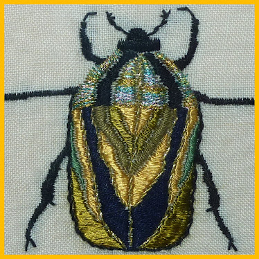 scarabée  or