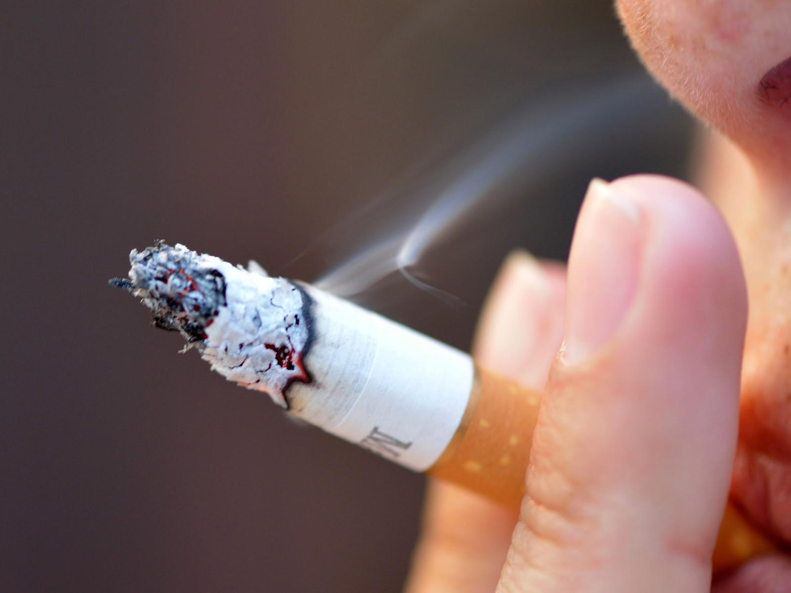 Aveia + uma calêndula para deixar de fumar