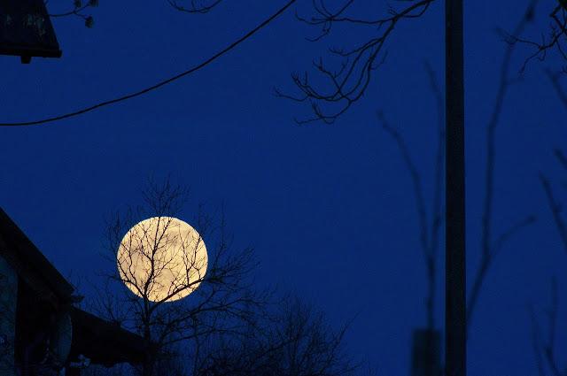 księżyc, pełnia. wiosna, dom, Lotyń