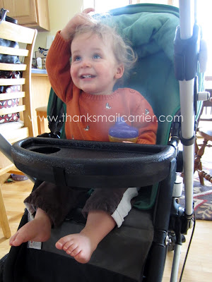 Bugaboo tray review