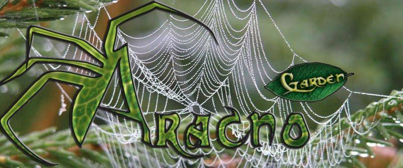 ARACNO Garden