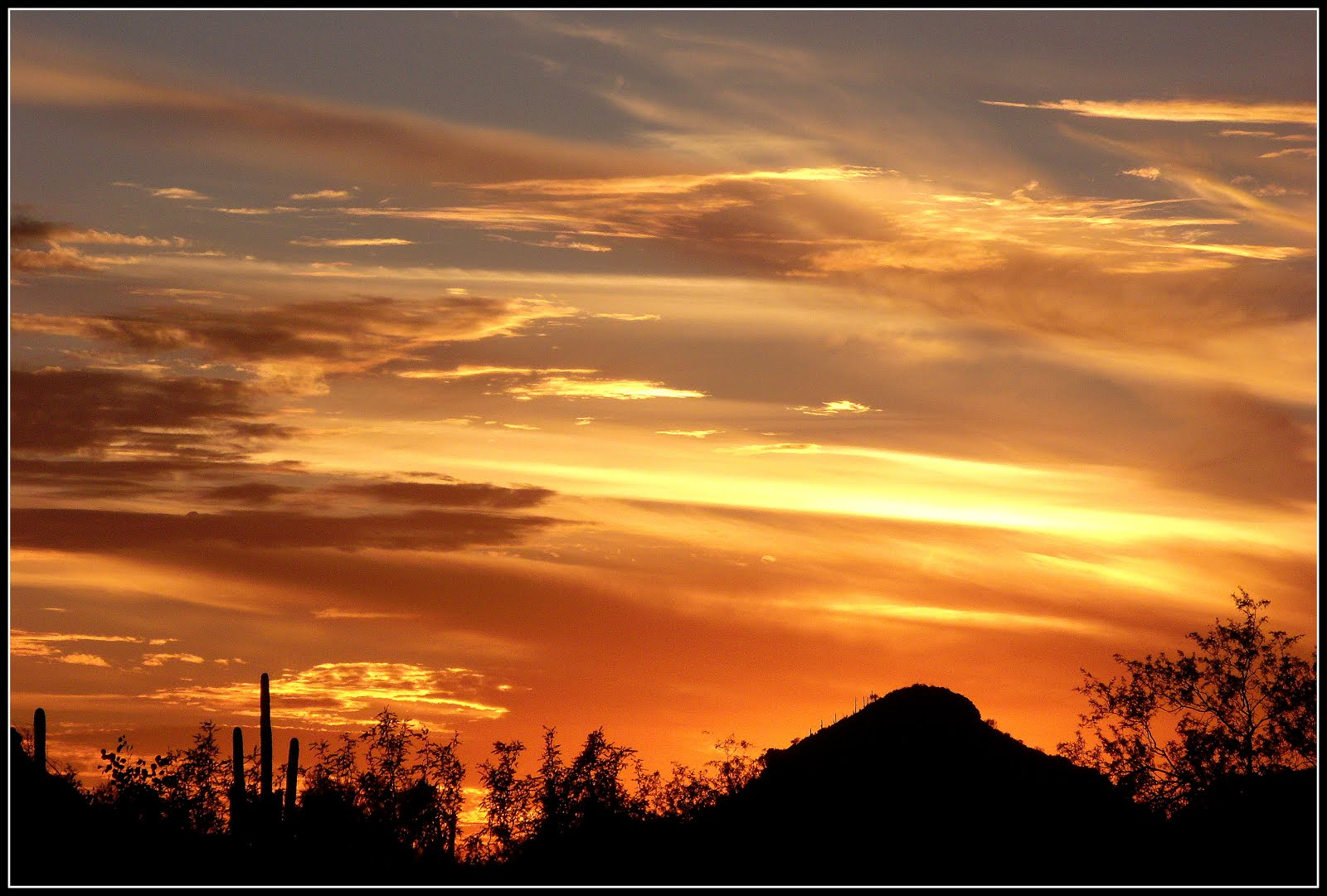Beautiful Tucson Arizona