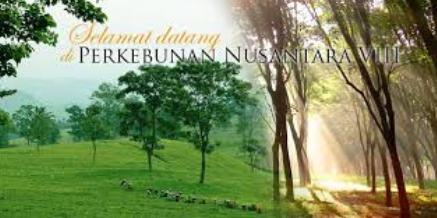 Loker PT Perkebunan Nusantara 2014