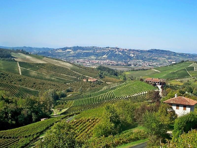Fratelli Revello winery Piedmont