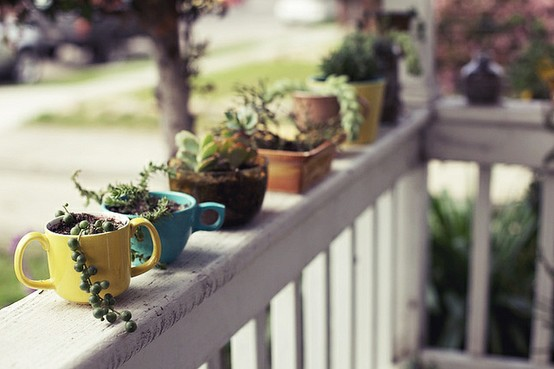 -+teacup+mug+planters+-+garden+steps+-+garden+decor+via+pinterest.jpg