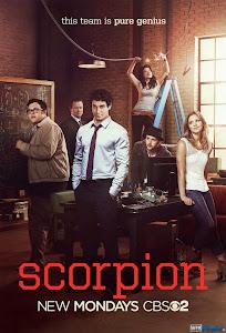 Xem Phim Bò Cạp Phần 1 - Scorpion Season 1