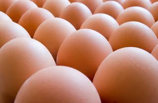 Ovos ricos em proteínas magras em suas claras
