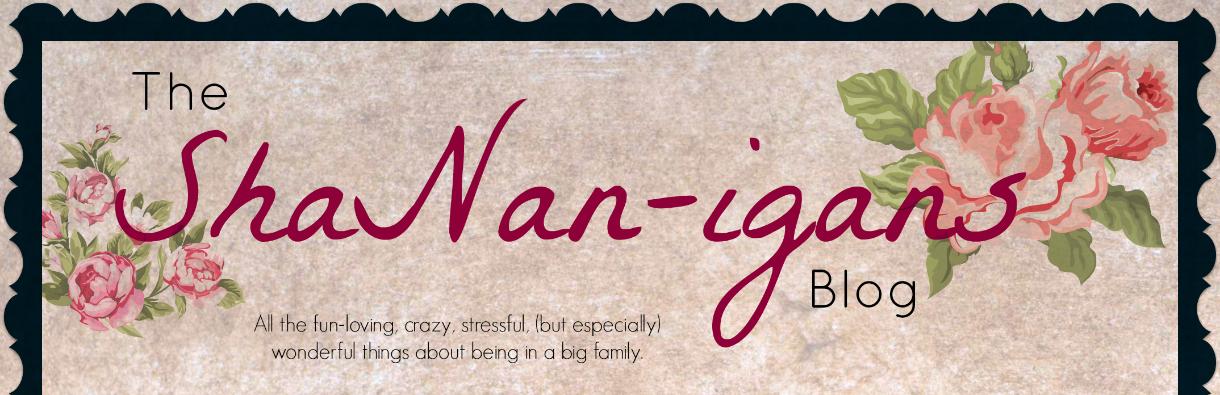 The ShaNan-igans Blog
