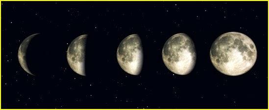 Crea vegetal la lune et les plantes - Lune montante et descendante ...