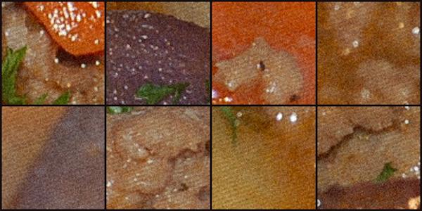 Close up Gastrocam images of Bernoux's stomach irritant