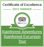St. Lucia Rainforest Excursion Tour on TripAdvisor