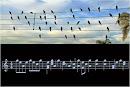 {Συνθέτοντας μουσική από απρόσμενη αφορμή!}