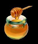 Tarro con dulce miel de tomillo