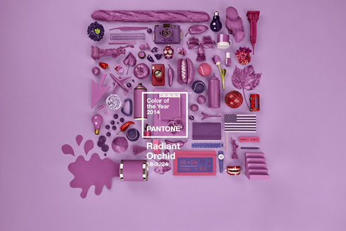 Pantone Color of the Year - Radiant Orchid