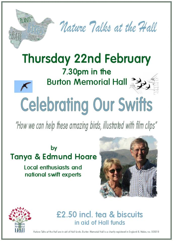 """Celebrating Our Swifts"""