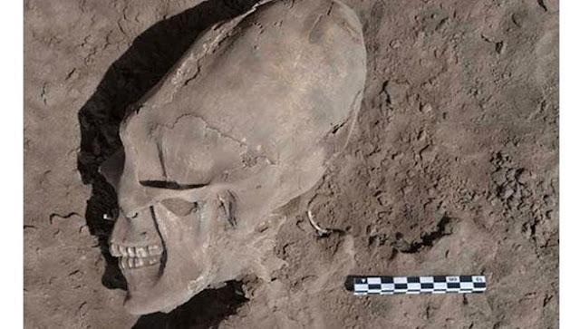 Descubren cráneos alargados en Sonora, México, 2012